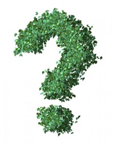 green question mark full sized